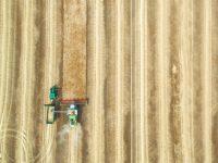 yield_farming